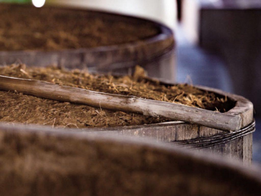 ¿Cómo Extraemos Los Azúcares  De Los Agaves?
